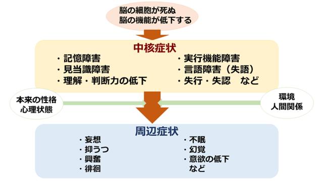 図:認知症の発症による直接的に起こる中核症状、中核症状が性格や環境などに影響して現われる周辺症状を説明する図。