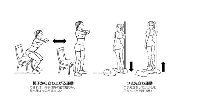 図1:筋力トレーニングの例。椅子から立ち上がりを繰り返す運動と、つま先立ちを繰り返す運動