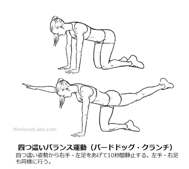 図3:四つ這いバランス運動(バードドッグ・クランチ)のやり方を示す図