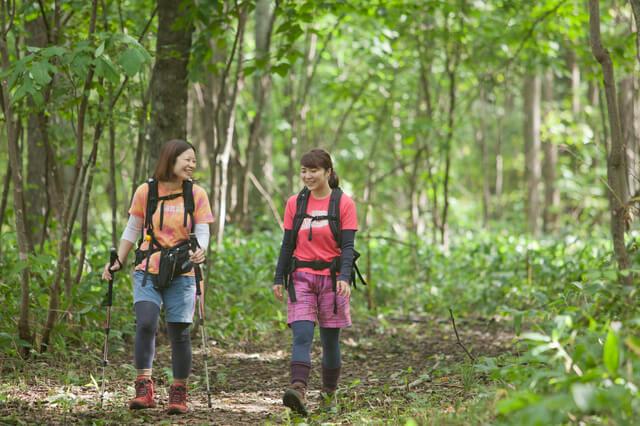 Последствия пеших прогулок и треккинга, как ходить, меры предосторожности